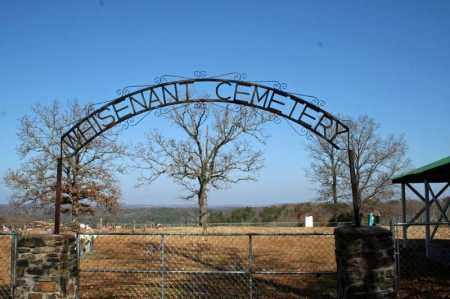 *WHISENANT CEMETERY GATE,  - Searcy County, Arkansas |  *WHISENANT CEMETERY GATE - Arkansas Gravestone Photos