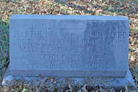 WHITE, JANIS KATHENIA - Searcy County, Arkansas | JANIS KATHENIA WHITE - Arkansas Gravestone Photos
