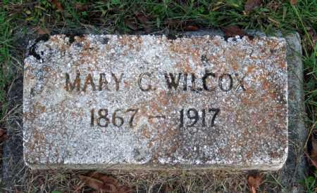 JACKSON WILCOX, MARY C. - Searcy County, Arkansas   MARY C. JACKSON WILCOX - Arkansas Gravestone Photos