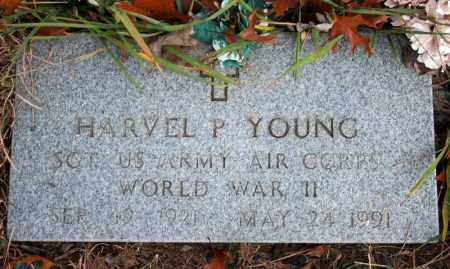 YOUNG (VETERAN WWII), HARVEL P - Searcy County, Arkansas | HARVEL P YOUNG (VETERAN WWII) - Arkansas Gravestone Photos