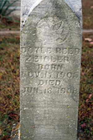 ZEIGLER, DOYLE REED - Searcy County, Arkansas   DOYLE REED ZEIGLER - Arkansas Gravestone Photos