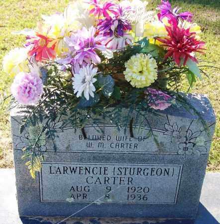 STURGEON CARTER, LAWRENCIE - Sebastian County, Arkansas | LAWRENCIE STURGEON CARTER - Arkansas Gravestone Photos