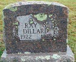 DILLARD, RAY S - Sebastian County, Arkansas | RAY S DILLARD - Arkansas Gravestone Photos