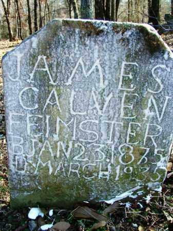 FEIMSTER, JAMES CALVEN - Sebastian County, Arkansas | JAMES CALVEN FEIMSTER - Arkansas Gravestone Photos