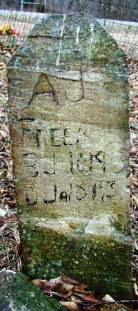 FREEMAN, A J - Sebastian County, Arkansas | A J FREEMAN - Arkansas Gravestone Photos