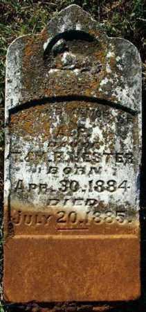 HESTER, A. P. - Sebastian County, Arkansas | A. P. HESTER - Arkansas Gravestone Photos