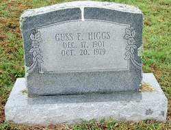HIGGS, GUSS F. - Sebastian County, Arkansas | GUSS F. HIGGS - Arkansas Gravestone Photos