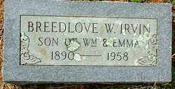 IRVIN, BREEDLOVE W. - Sebastian County, Arkansas | BREEDLOVE W. IRVIN - Arkansas Gravestone Photos