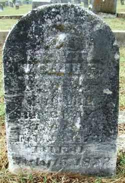 MCCRAY, MOLLIE B - Sebastian County, Arkansas | MOLLIE B MCCRAY - Arkansas Gravestone Photos