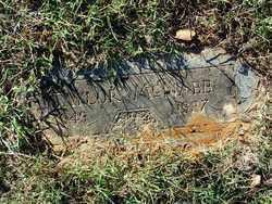 MCNABB, TAYLOR - Sebastian County, Arkansas   TAYLOR MCNABB - Arkansas Gravestone Photos