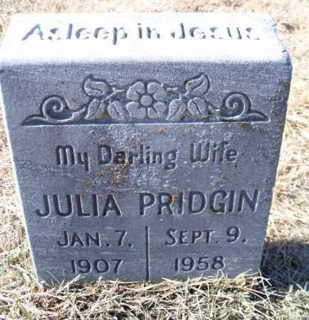 PRIDGIN, JULIA - Sebastian County, Arkansas | JULIA PRIDGIN - Arkansas Gravestone Photos