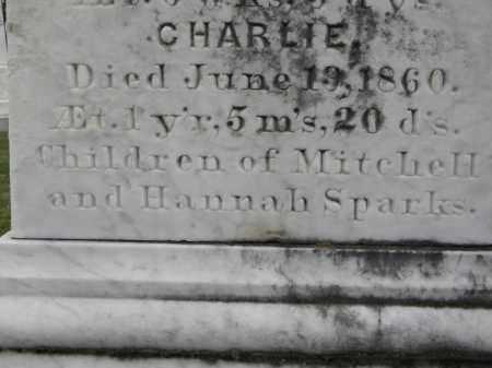 SPARKS, CHARLIE - Sebastian County, Arkansas   CHARLIE SPARKS - Arkansas Gravestone Photos
