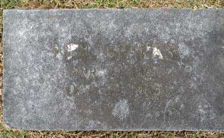 SPARKS, NEIL - Sebastian County, Arkansas | NEIL SPARKS - Arkansas Gravestone Photos
