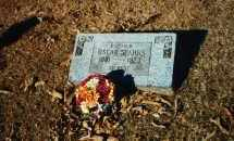 SPARKS, OSCAR - Sebastian County, Arkansas | OSCAR SPARKS - Arkansas Gravestone Photos