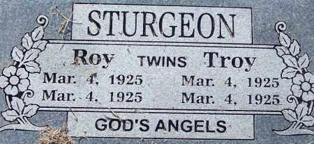 STURGEON, TROY - Sebastian County, Arkansas | TROY STURGEON - Arkansas Gravestone Photos