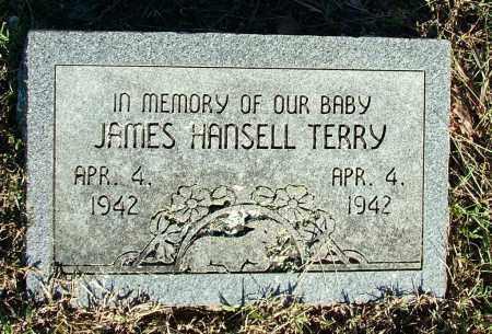 TERRY, JAMES HANSELL - Sebastian County, Arkansas | JAMES HANSELL TERRY - Arkansas Gravestone Photos