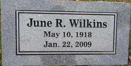 WILKINS, JUNE R. - Sebastian County, Arkansas | JUNE R. WILKINS - Arkansas Gravestone Photos