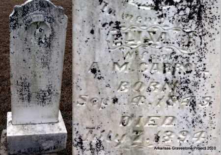 "KINGREE MCCLOUD, ELIZABETH ""ELILZA"" JANE - Sevier County, Arkansas | ELIZABETH ""ELILZA"" JANE KINGREE MCCLOUD - Arkansas Gravestone Photos"