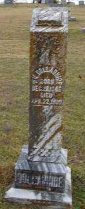 DOLLARHIDE, WILLIAM KING - Sevier County, Arkansas   WILLIAM KING DOLLARHIDE - Arkansas Gravestone Photos