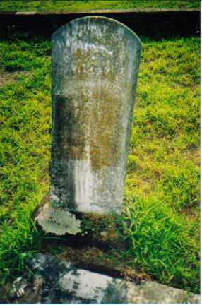 GALLAHER, JINNIE - Sevier County, Arkansas | JINNIE GALLAHER - Arkansas Gravestone Photos