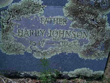 JOHNSON, HARRY - Sevier County, Arkansas   HARRY JOHNSON - Arkansas Gravestone Photos