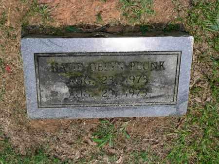 PLUNK, KATIE DELYN - Sevier County, Arkansas | KATIE DELYN PLUNK - Arkansas Gravestone Photos