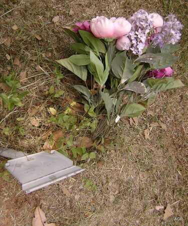 UNKNOWN, UNKNOWN - Sevier County, Arkansas | UNKNOWN UNKNOWN - Arkansas Gravestone Photos