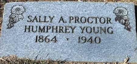 YOUNG, SALLY A HUMPHREY - Sevier County, Arkansas | SALLY A HUMPHREY YOUNG - Arkansas Gravestone Photos