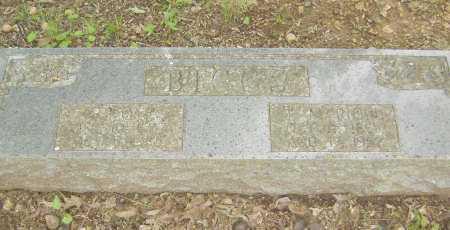 "BIGGS, SARAH C. ""DONA"" - Sharp County, Arkansas | SARAH C. ""DONA"" BIGGS - Arkansas Gravestone Photos"