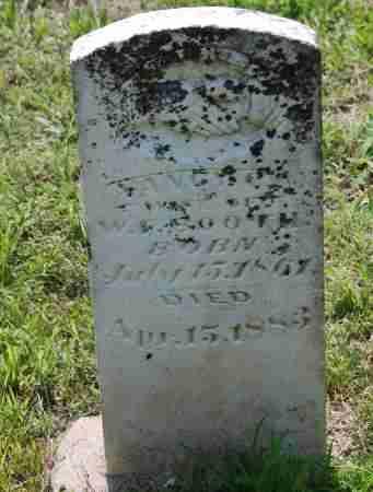 WILSON BOOTH, NANCY C - Sharp County, Arkansas | NANCY C WILSON BOOTH - Arkansas Gravestone Photos