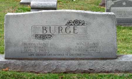 BURGE, THOMAS NEWTON - Sharp County, Arkansas   THOMAS NEWTON BURGE - Arkansas Gravestone Photos