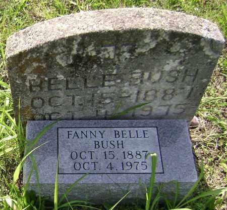 BUSH, FANNY BELLE - Sharp County, Arkansas   FANNY BELLE BUSH - Arkansas Gravestone Photos