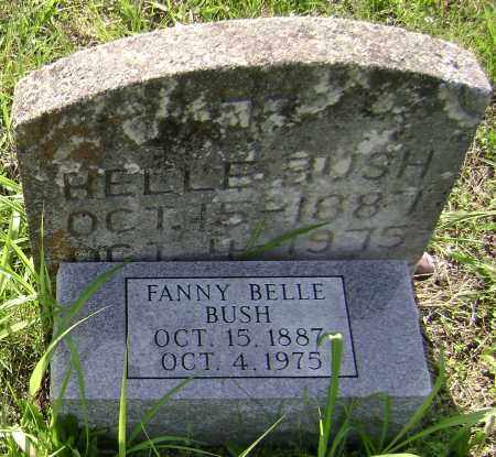 BUSH, FANNY BELLE - Sharp County, Arkansas | FANNY BELLE BUSH - Arkansas Gravestone Photos