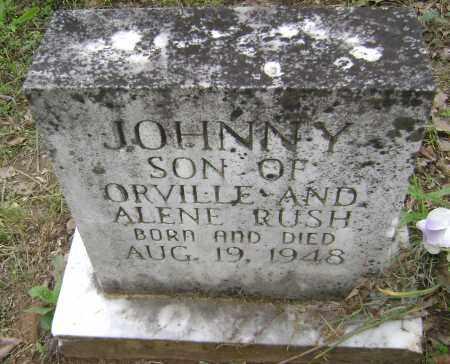 BUSH, JOHNNY - Sharp County, Arkansas | JOHNNY BUSH - Arkansas Gravestone Photos