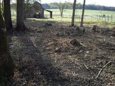 *CHARLES WARE FAMILY,  - Sharp County, Arkansas |  *CHARLES WARE FAMILY - Arkansas Gravestone Photos