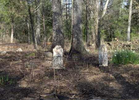 *CHARLES WARE FAMILY OVERVIEW,  - Sharp County, Arkansas |  *CHARLES WARE FAMILY OVERVIEW - Arkansas Gravestone Photos