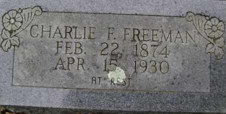 FREEMAN, CHARLIE F - Sharp County, Arkansas   CHARLIE F FREEMAN - Arkansas Gravestone Photos