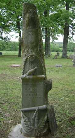 FREEMAN, GEORGE W - Sharp County, Arkansas | GEORGE W FREEMAN - Arkansas Gravestone Photos