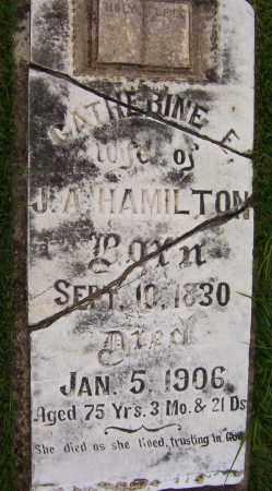 HAMILTON, CATHERINE E. - Sharp County, Arkansas | CATHERINE E. HAMILTON - Arkansas Gravestone Photos