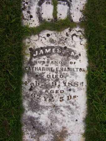 HAMILTON, JAMES A. - Sharp County, Arkansas | JAMES A. HAMILTON - Arkansas Gravestone Photos