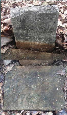 HELMS, JAMES DAVID - Sharp County, Arkansas | JAMES DAVID HELMS - Arkansas Gravestone Photos