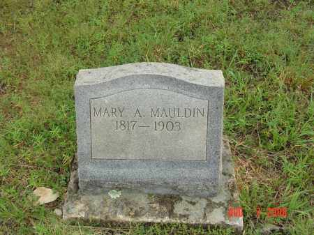 SMALLEY, MARY ANN - Sharp County, Arkansas | MARY ANN SMALLEY - Arkansas Gravestone Photos