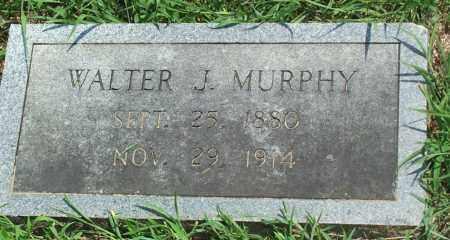 MURPHY, WALTER JACKSON - Sharp County, Arkansas | WALTER JACKSON MURPHY - Arkansas Gravestone Photos