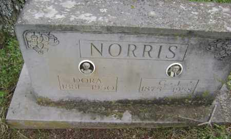GAY NORRIS, LOU DORA - Sharp County, Arkansas | LOU DORA GAY NORRIS - Arkansas Gravestone Photos