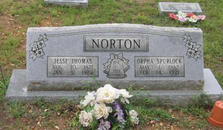 NORTON, ORPHA - Sharp County, Arkansas | ORPHA NORTON - Arkansas Gravestone Photos