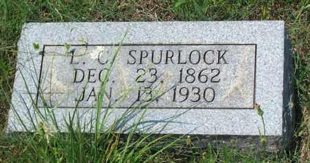 SPURLOCK, LOUISA CATHERINE - Sharp County, Arkansas | LOUISA CATHERINE SPURLOCK - Arkansas Gravestone Photos