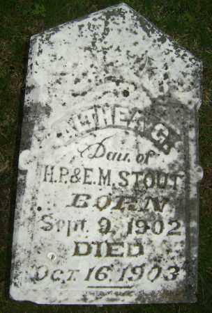 STOUT, ALTHEA G - Sharp County, Arkansas   ALTHEA G STOUT - Arkansas Gravestone Photos