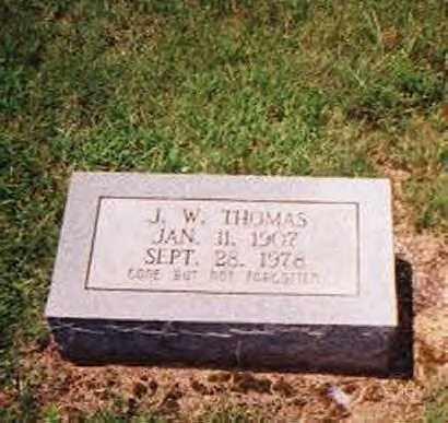 THOMAS, JAMES WILLIAM - Sharp County, Arkansas | JAMES WILLIAM THOMAS - Arkansas Gravestone Photos