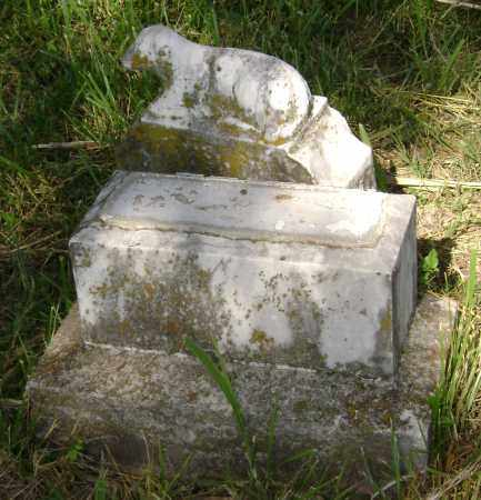 TODD, W M - Sharp County, Arkansas | W M TODD - Arkansas Gravestone Photos