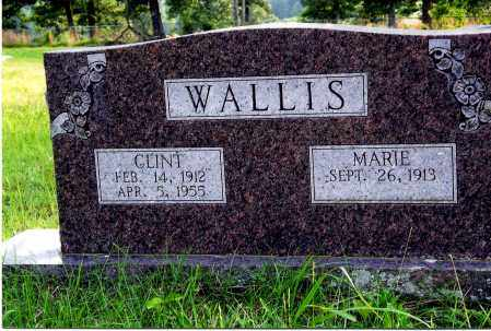 WALLIS, CLINT - Sharp County, Arkansas | CLINT WALLIS - Arkansas Gravestone Photos